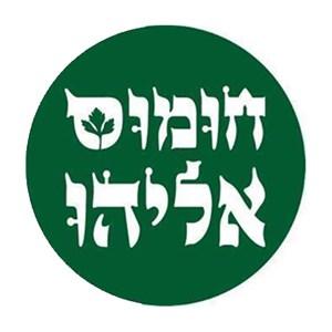 חומוס אליהו עמק הירדן